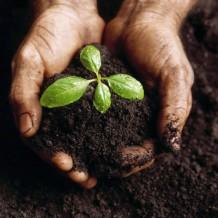 Persoonlijke Groei? 7 Goede Redenen!